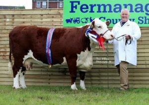 Hilton 1 Delilah owned by James Graham Overall 2016 Female Champion