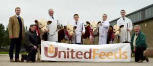 From left, Judge Matt Gray, Overall Champion Male Solpoll 1 Nomad with John McMordie, reserve overall Male Lisrace Lumberjack D Wilson, overall Champion Female Mountview 1 Estelle with Trevor Andrews, reserve overall female Solpoll 1Duchess with Andrew McMordie, also included holding sponsor United Feeds Banner are president Cecil Beattie and Chairman John Gill