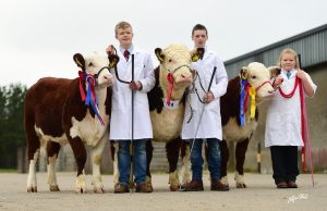 Young Handler Champion Marcus Murdock (left) Owen Gill (Center) Emily Peters reserve (right)