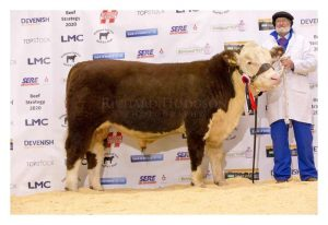 Senior Champion Barnburn 1 Napolean Owned and bred by B&G Watson