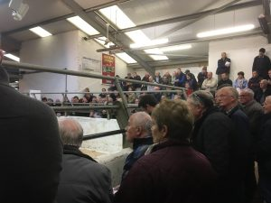 A packed sale ring at NIHBA show and sale on Easter Tuesday