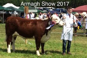 Bradley Graham takes Overall Young Handler Championship at Armagh Show