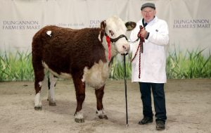 Ian McFadden and his first prize Heifer Bellshill 1 Nancy