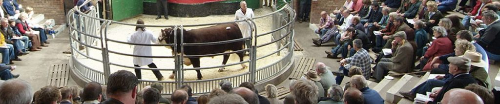 Hereford Beef Sales